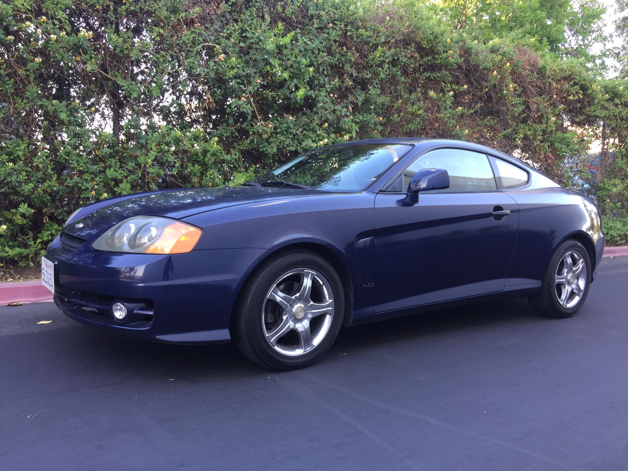 used 2003 hyundai tiburon gt at city cars warehouse inc. Black Bedroom Furniture Sets. Home Design Ideas