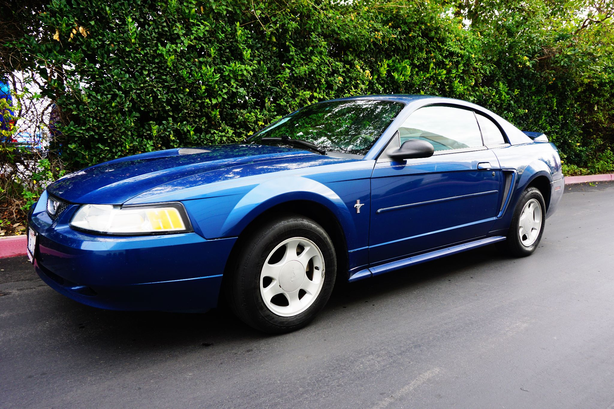 Used 2000 ford mustang sport at city cars warehouse inc