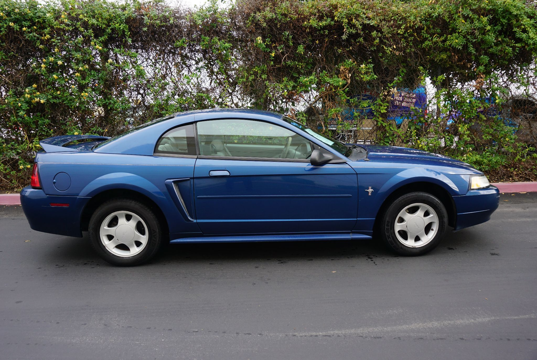 Used 2000 Ford Mustang GT Limited at City Cars Warehouse INC