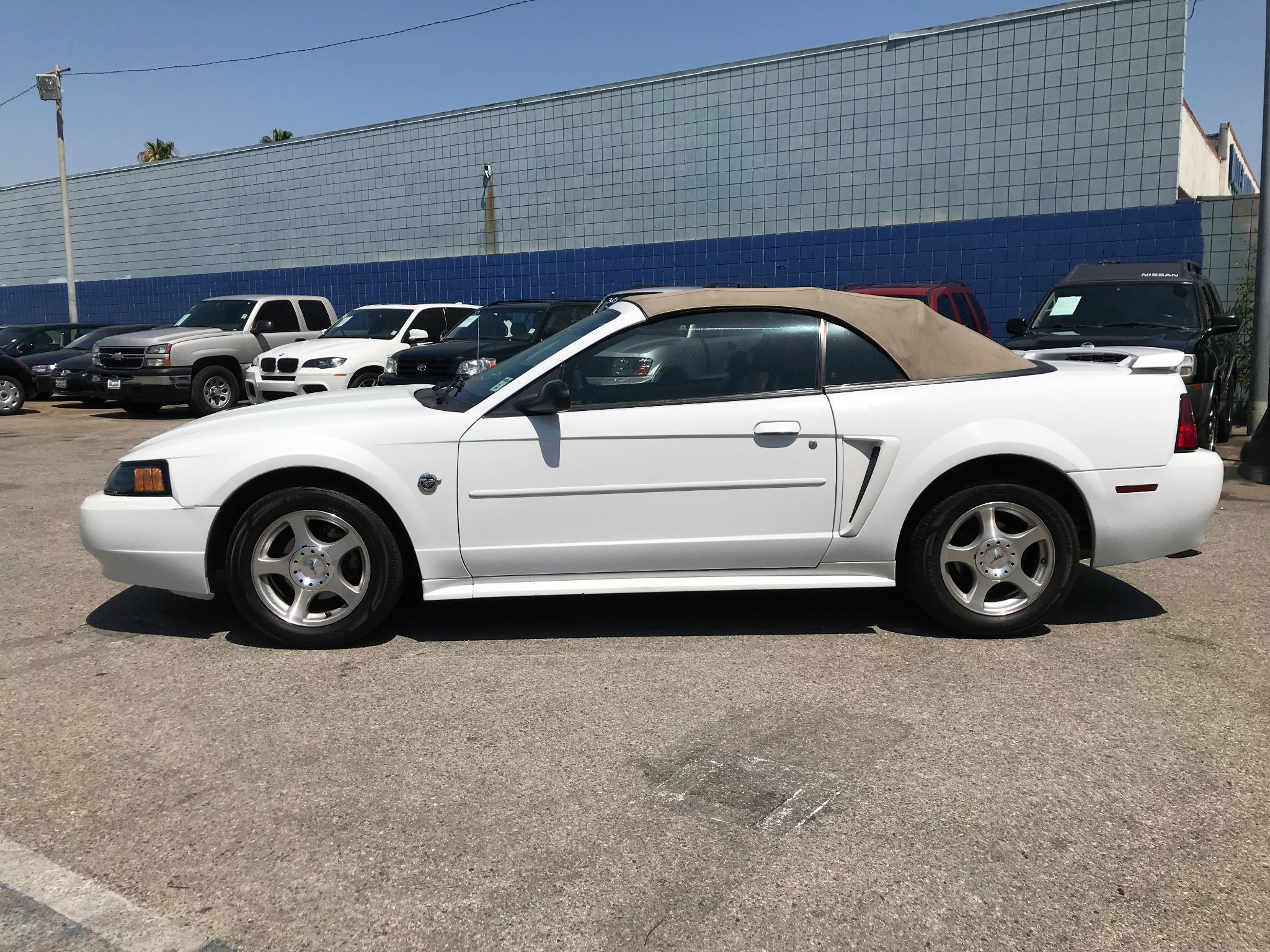 Used 2004 Ford Mustang Premium at City Cars Warehouse INC